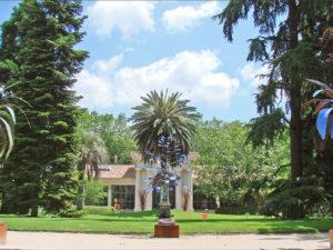 Real Jardin Botanico Madrid
